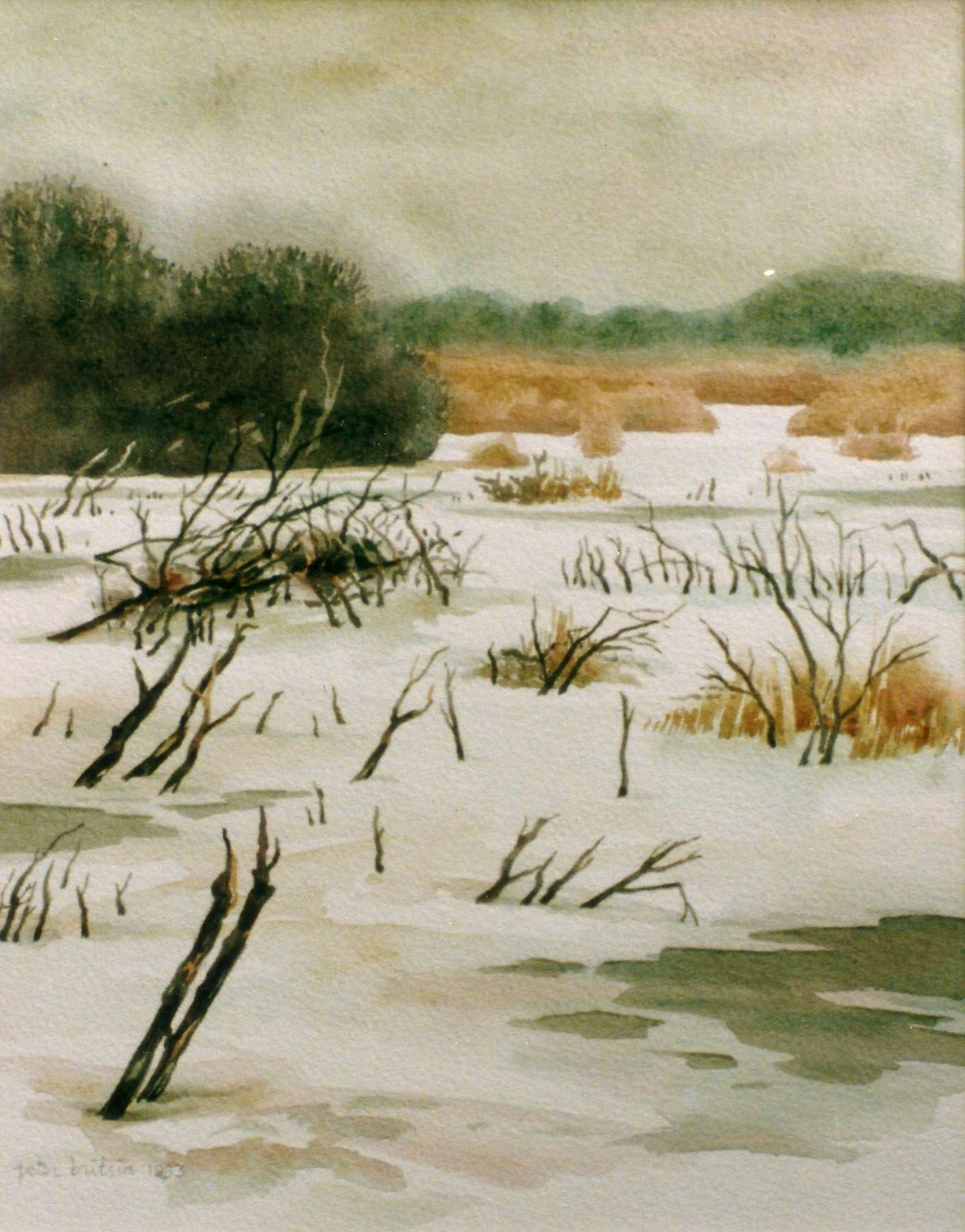 Quackjeswater 1- aquarel - 30 x 40 cm.