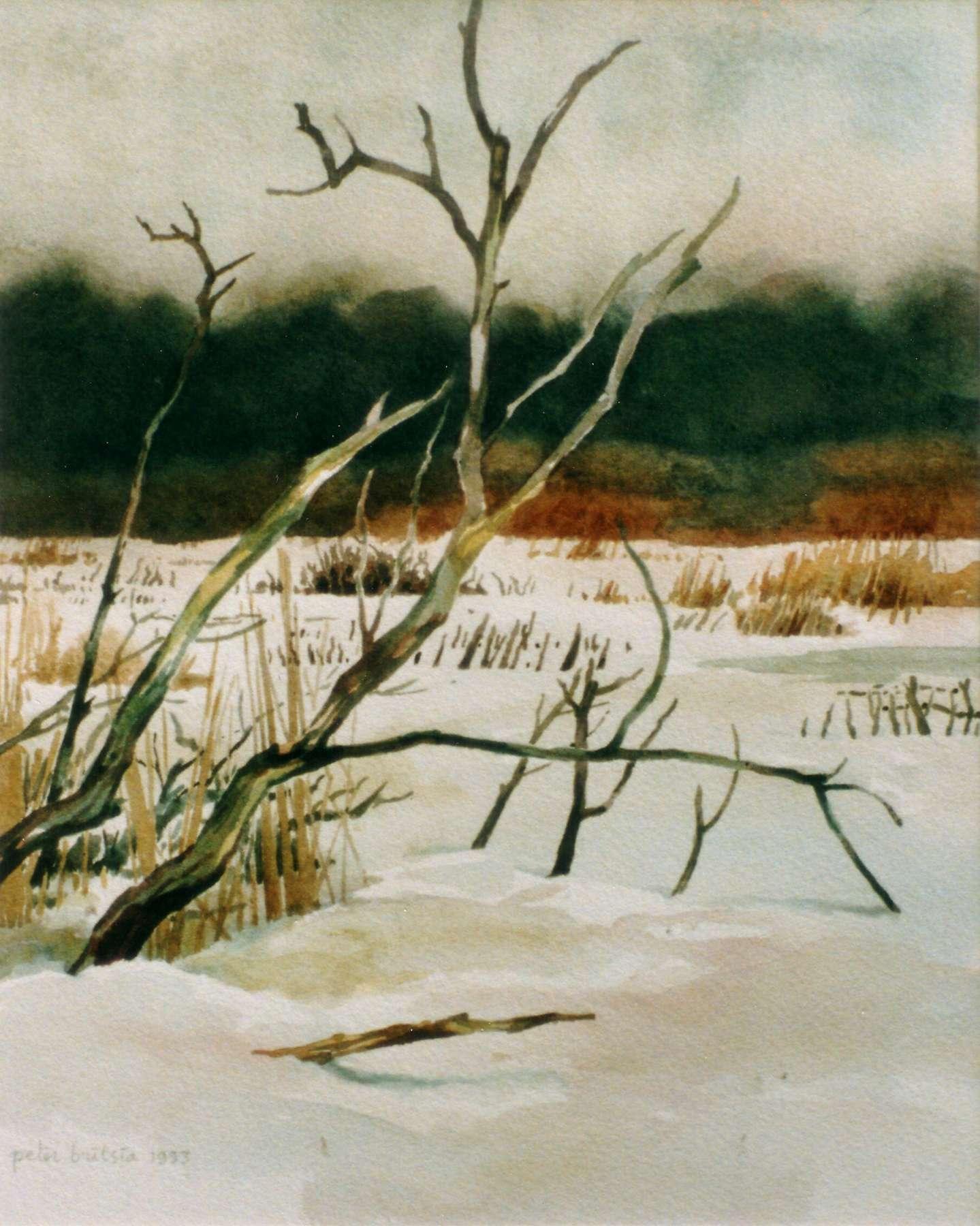 Quackjeswater 2- aquarel - 30 x 40 cm.
