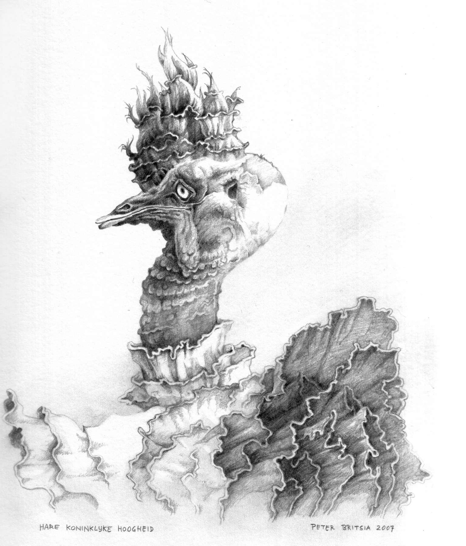 Hoogheid - potloodtekening<br>Hare Koninklijke Hoogheid heeft zich naar haar eigen maatstaven zo uitgedost, dat haar bijzondere schoonheid extra zal opvallen.
