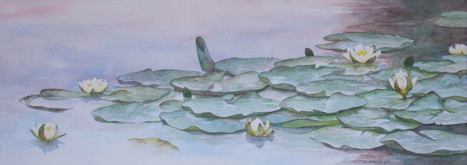 Waterlelies - aquarel - 60 x 22 cm.