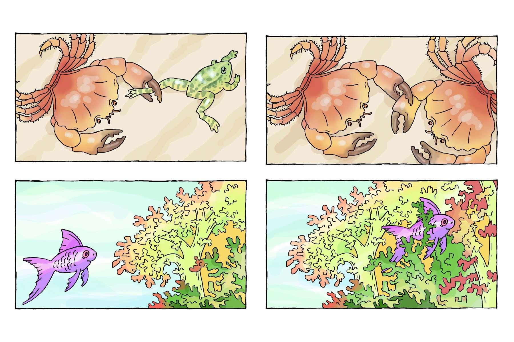 de krab vangt een kikker - de krab vangt een krab<br>de vis zwemt naar het koraal - de vis zwemt in het koraal