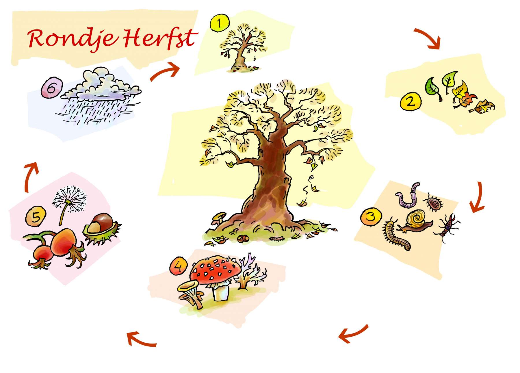 Rondje herfst - doe-opdrachten voor kinderen <br>Natuurcentrum de Papaver Delft