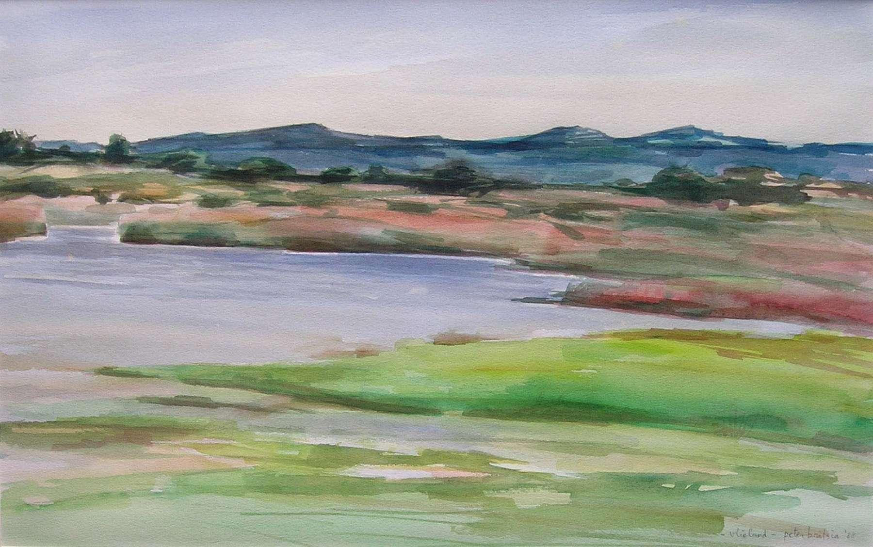 Kroonpolder Vlieland - aquarel - 65 x 50 cm.