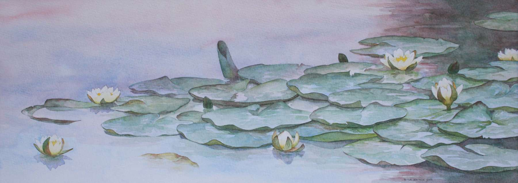Waterlelies - aquarel - 60 x 22 cm.